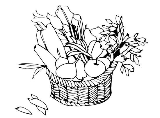 Fit Catering - warzywa i owoce z polskich upraw